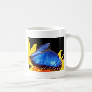 butterflies blue morpho butterfly basic white mug