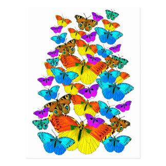 Butterflies! Butterflies!  Postcard