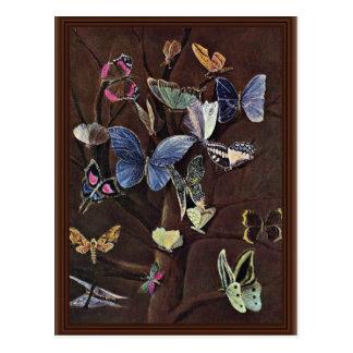 Butterflies By Kaulbach Wilhelm Von (Best Quality) Postcard