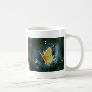 butterflies colours of rainbow basic white mug
