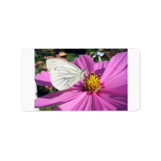 Butterflies Personalized Address Label