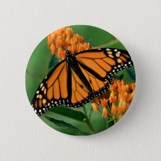butterflies monarch butterfly 2 inch round button