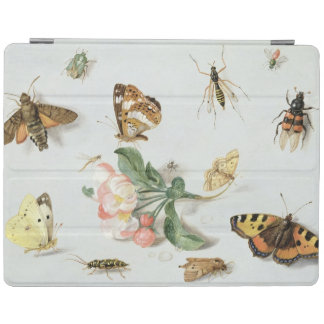 Butterflies, moths and other insects iPad cover