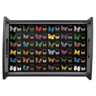 Butterflies of the World (dark) Serving Tray