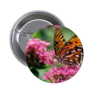 butterflies rounds social butterfly pinback buttons
