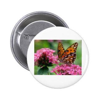 butterflies rounds social butterfly pin
