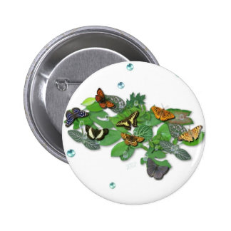 Butterflies with sheets, rain drop, beads 2 inch round button