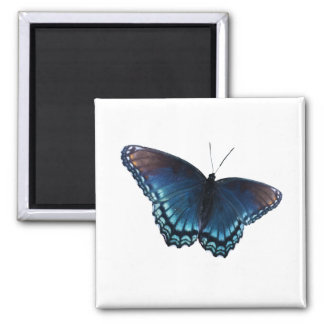 butterfly 16 magnet