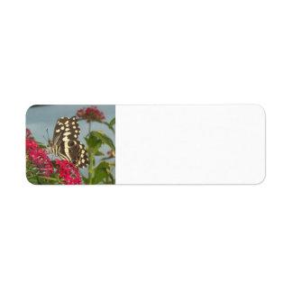 """Butterfly"" Address Labels"