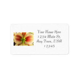 Butterfly Amaryllis Personalized Address Label