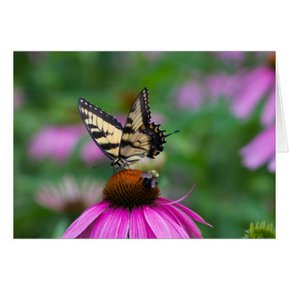 Butterfly and Bee Card