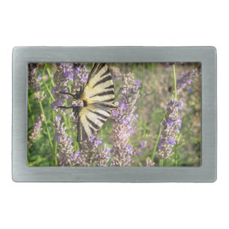 Butterfly and Lavender Belt Buckles