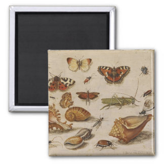 Butterfly and Shell Magnent Square Magnet