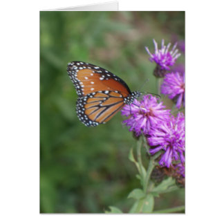 Butterfly and Wildflower Greeting Card