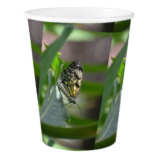 Butterfly Beauty Paper Cup