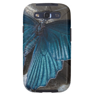 butterfly blue insect flying beautiful wings samsung galaxy s3 case