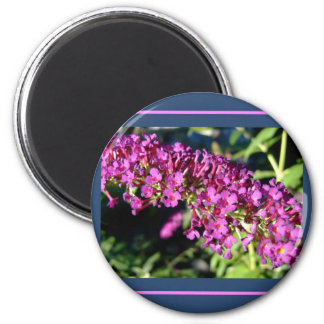 Butterfly Bush 2 Inch Round Magnet
