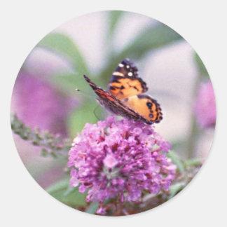 butterfly bush & butterfly classic round sticker