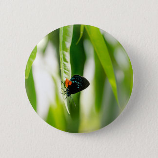Butterfly by Erina Moriarty 2 Inch Round Button