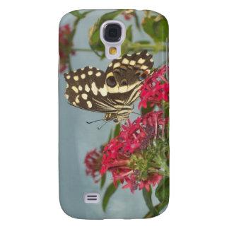 """""""Butterfly"""" Case"""