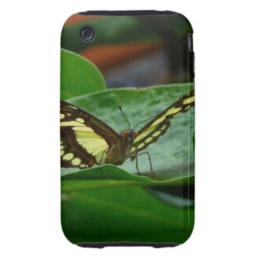 Butterfly Tough iPhone 3 Covers