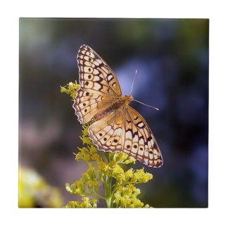 Butterfly Ceramic Photo Tile