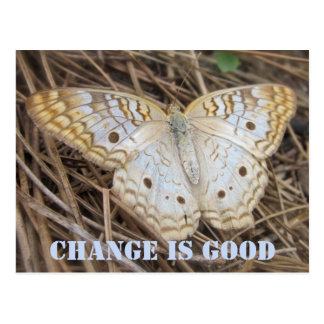 Butterfly Change Is Good Postcard