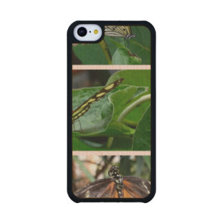 Butterfly Collage Carved® Maple iPhone 5C Slim Case