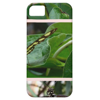 Butterfly Collage iPhone 5 Cover