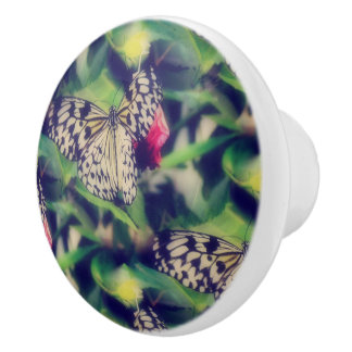 Butterfly Collage Ceramic Knob