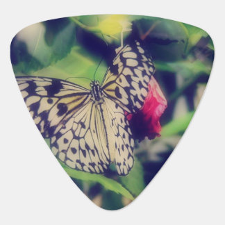 Butterfly Collage Guitar Pick