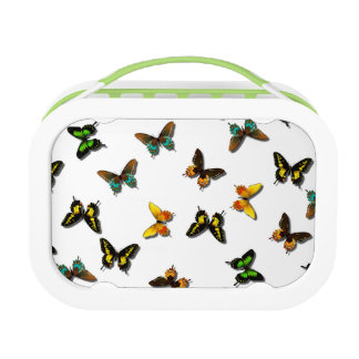 Butterfly Collection Lunch Box