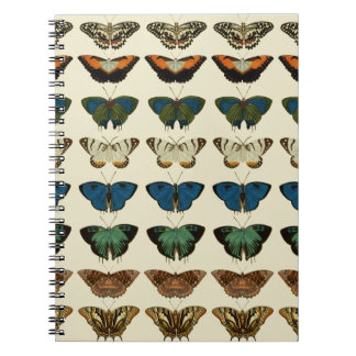 Butterfly Collection Spiral Notebook