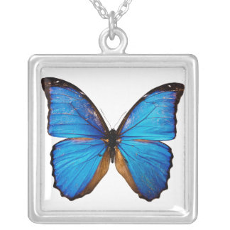 Butterfly Collector Square Pendant Necklace