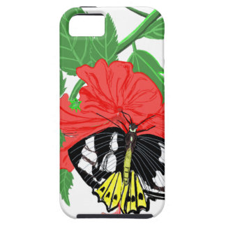 Butterfly Drinking Nectar iPhone 5 Cases