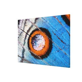 Butterfly false eye close up canvas print