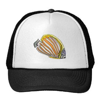 Butterfly Fish Hat