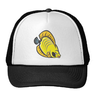 Butterfly Fish Mesh Hat