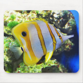 Butterfly fish mouse pad