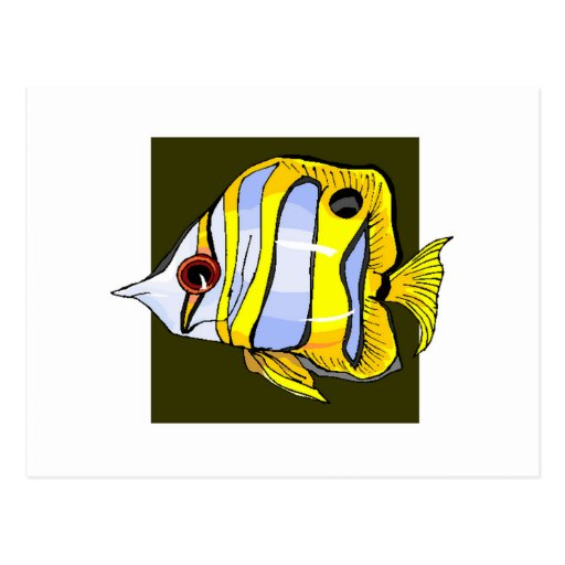 Butterfly Fish Post Cards