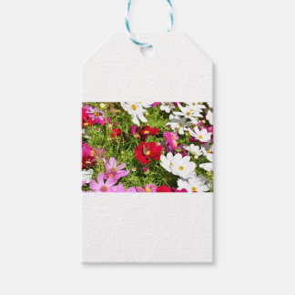 BUTTERFLY & FLOWERS AUSTRALIA GIFT TAGS