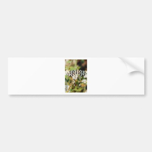 Butterfly Flowers Blossoms Wedding Shower Peace Bumper Stickers