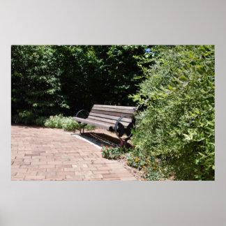 Butterfly Garden Bench Poster