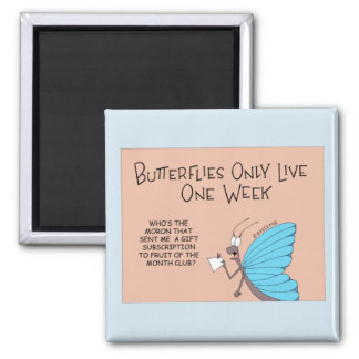 Butterfly gets a monthly subscription magnet