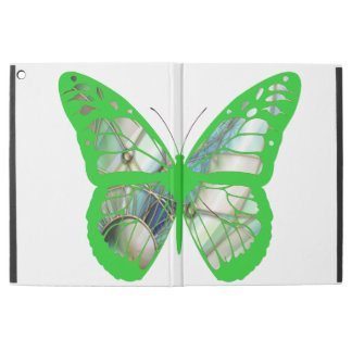 Butterfly Green Stained Glass Butterfly Case