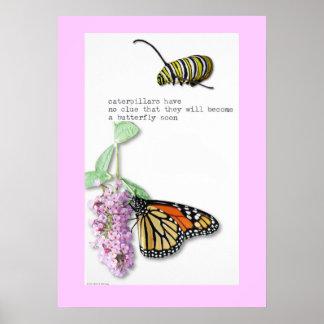 Butterfly Haiku poster