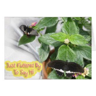 Butterfly-Hi Card