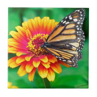 butterfly in a flower tile