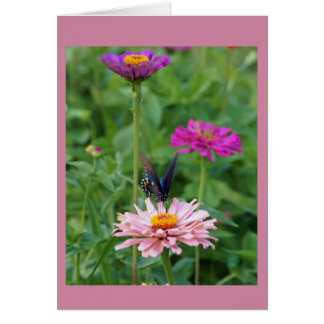 Butterfly in the Garden Card