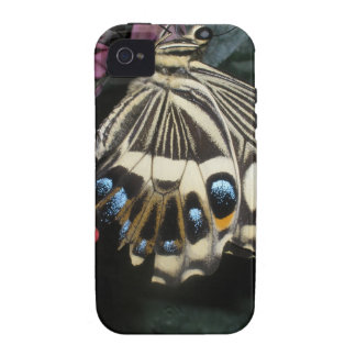 Butterfly iPhone 4/iPhone 4S Case-Mate Tough™ Case Vibe iPhone 4 Cover